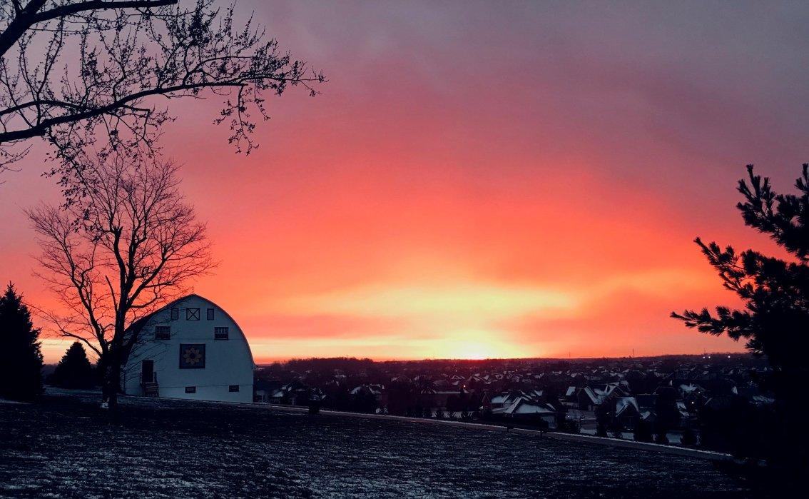 Fleck Sunrise